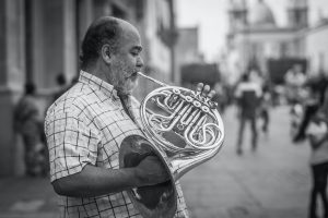 Man playing the French Horn